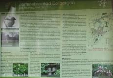Dorferlebnispfad_Dollbergen_200914_copy_Heike_Weiler_IMG_7612