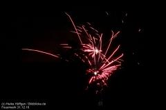 Feuerwerk_311216_IMG_3569
