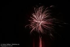 Feuerwerk_311216_IMG_3577