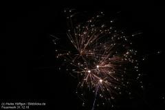 Feuerwerk_311216_IMG_3579