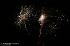 Feuerwerk_311216_IMG_3586