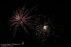 Feuerwerk_311216_IMG_3587