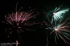 Feuerwerk_311216_IMG_3593