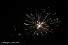 Feuerwerk_311216_IMG_3595