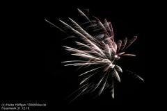 Feuerwerk_311216_IMG_3632
