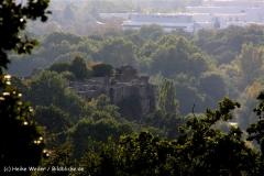 Halle-190909-Halle-IMG_5326