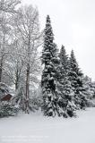 Lehrte_im_Schnee_170116_IMG_8041