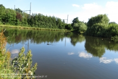 Regenrueckhaltebecken_Langenhagen_040717_IMG_0323