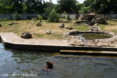 Tiergarten Bernburg 030710-IMG_5587
