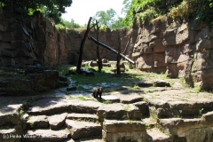 Tierpark BerlinIMG_6990_1329