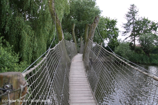 Tierpark Essehof 250610-IMG_4908