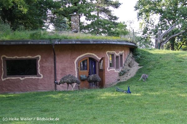 Tierpark Essehof 250610-IMG_5199