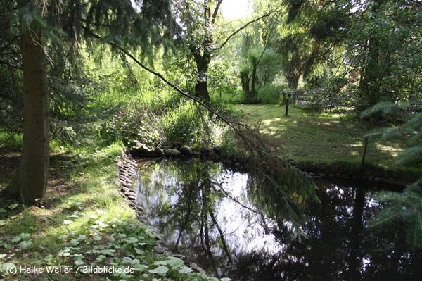 Tierpark Essehof 250610-IMG_5290