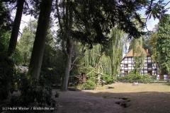 TierparkStroehen110909IMG_1195