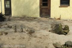Tierpark_Stroehen_220814_copy_Heike_Weiler_IMG_5818_5502