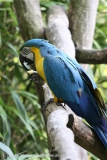 Tierpark_Stroehen_220814_copy_Heike_Weiler_IMG_5834
