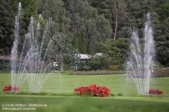 Weltvogelpark_Walsrode_070917_IMG_0608