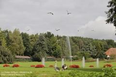 Weltvogelpark_Walsrode_070917_IMG_0868