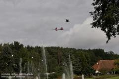 Weltvogelpark_Walsrode_070917_IMG_0871