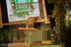 Weltvogelpark_Walsrode_070917_IMG_1028