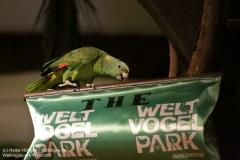 Weltvogelpark_Walsrode_070917_IMG_1079