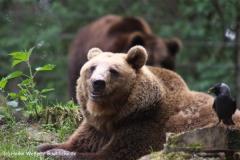 Wildpark-Lueneburg-230510-IMG_1380