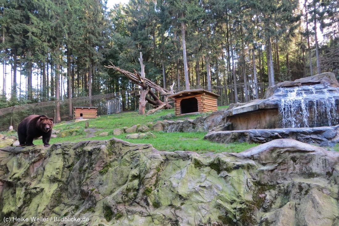 Wildpark_Lueneburger_Heide_270916_IMG_1641_9292
