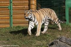 Wildpark_Lueneburger_Heide_270916_IMG_1491