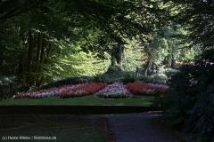 Wildpark_Lueneburger_Heide_270916_IMG_0814