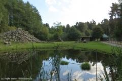 Wildpark_Lueneburger_Heide_270916_IMG_0916_9287