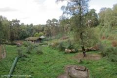 Wildpark_Lueneburger_Heide_270916_IMG_1201_9290