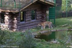 Wildpark_Lueneburger_Heide_270916_IMG_1220