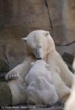 Zoo_Bremerhaven_100516_IMG_1796