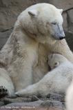 Zoo_Bremerhaven_100516_IMG_1796_1379