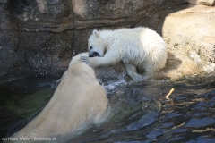 Zoo_Bremerhaven_100516_IMG_1882