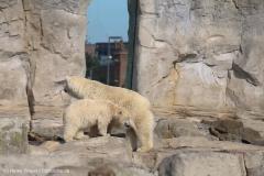 Zoo_Bremerhaven_220916_IMG_09633