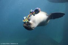 Zoo_Bremerhaven_220916_IMG_09692