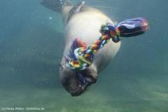 Zoo_Bremerhaven_220916_IMG_09770