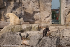 Zoo_Bremerhaven_220916_IMG_09862