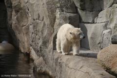 Zoo_Bremerhaven_220916_IMG_09893