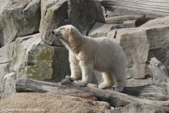 Zoo_Bremerhaven_220916_IMG_09899