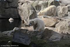 Zoo_Bremerhaven_220916_IMG_09906