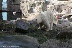 Zoo_Bremerhaven_220916_IMG_09913