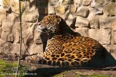 Zoo-Aschersleben-020410IMG_8822