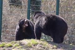 Zoo-Aschersleben-020410IMG_8906