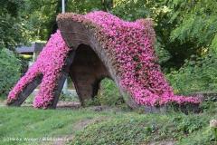 Zoo Aschersleben 030710-IMG_6020