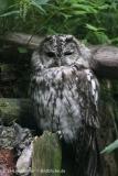 Zoo_Aschersleben_080814_copy_Heike_Weiler_IMG_5693
