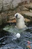 Zoo_Bremerhaven_180515_IMG_4891