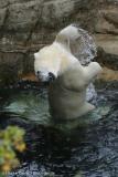 Zoo_Bremerhaven_180515_IMG_4901