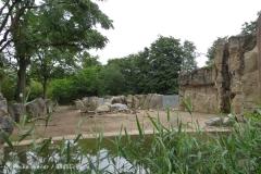 Zoo_Duisburg_280614_IMG_0505_5018
